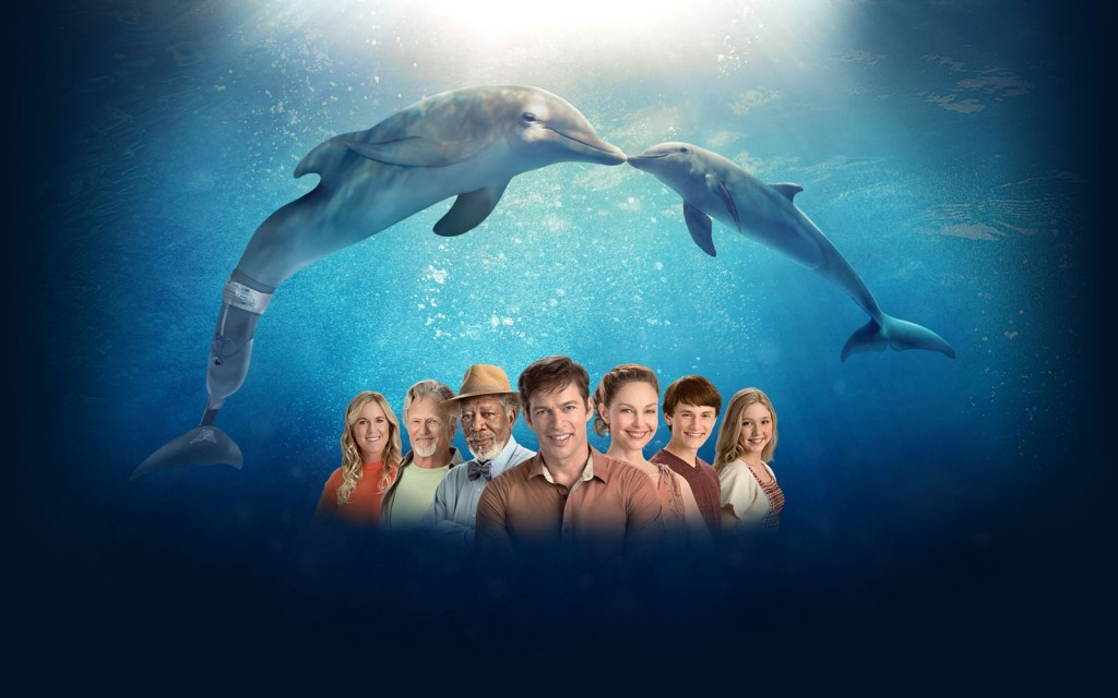 A Story of Hope In Dolphin Tale 2