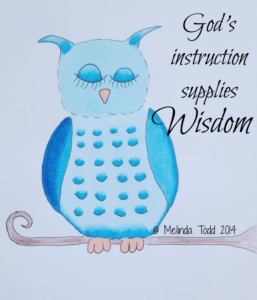 God's Instruction by Melinda Todd